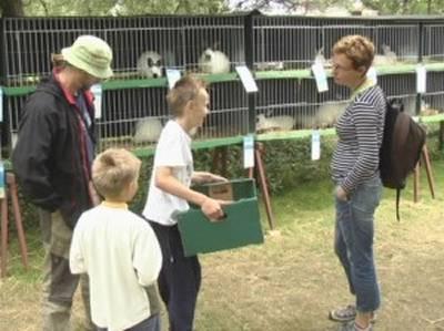 Výstava králíků a drobného zvířectva